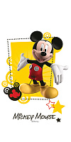 Mickey Friends R3060. Декор (30x60)